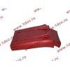 Брызговик передней оси правый H3 красный HOWO (ХОВО) WG1642230104 фото 2 Архангельск